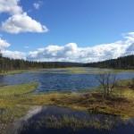 Jonas Hunting Experience Scandinavian Mountains