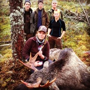 Älgjakt, älg, jakt, jaktlicens, jaktkurs, Sälen, Sälenfjällen
