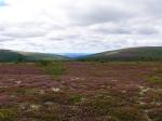 Jonas Hunting Experience, Scandinavian Mountains, jakt, Sälen, Sälenfjällen