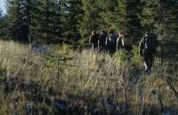 Tjäder jakt, Capercaillie hunt, Sälen, Sälenfjällen, Jonas hunting experience