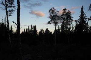 Jonas Hunting, Östfjällets Fäbod, Sälen, Sälenfjällen, Jonas i Sälen